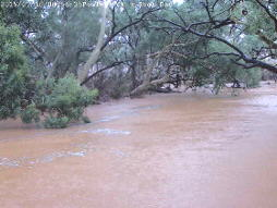Creek in full flow.